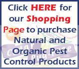 Cedar Bug-Free Natural Cedar Oil Products